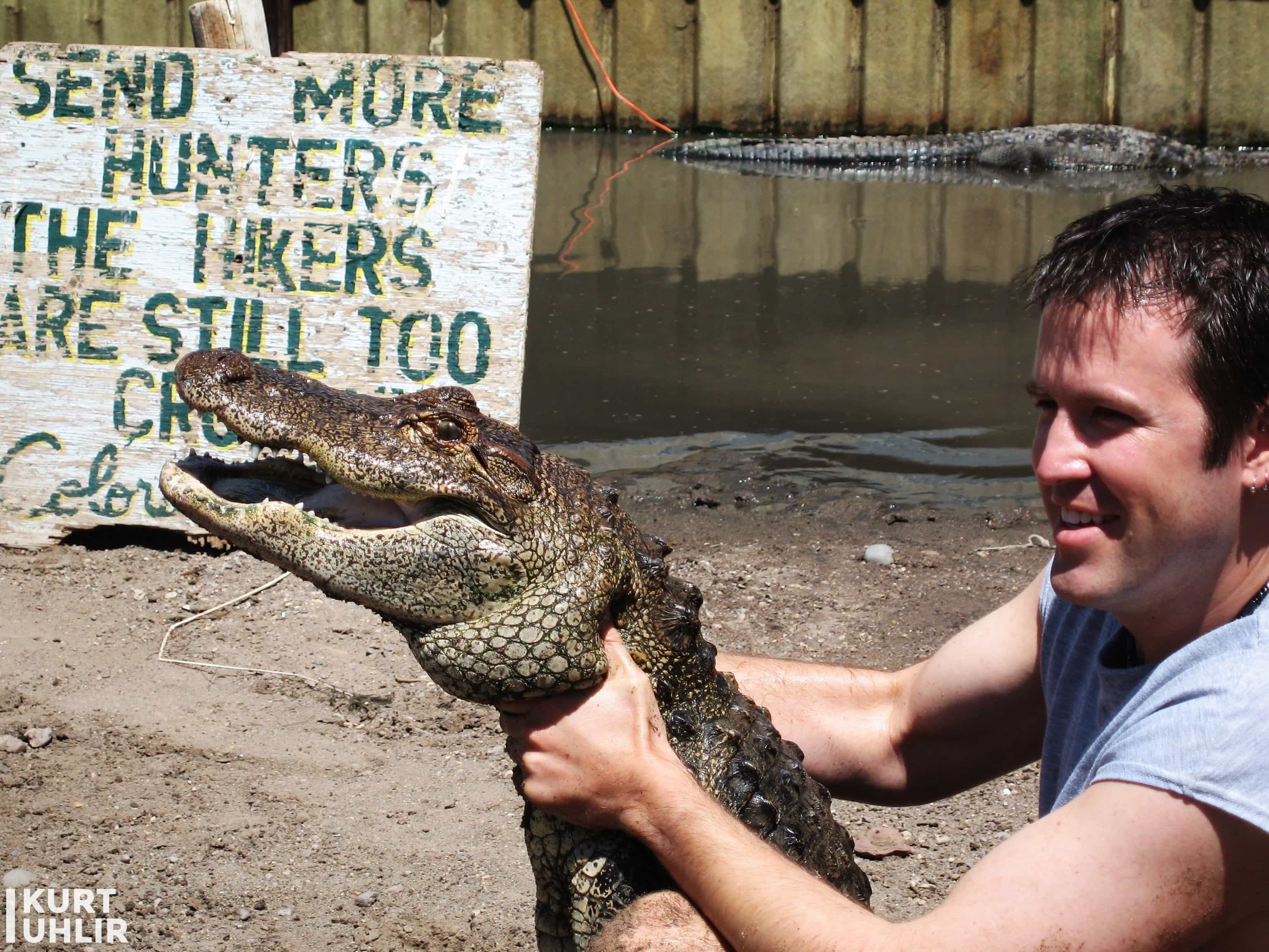 Kurt Uhlir handling a mid-sized alligator